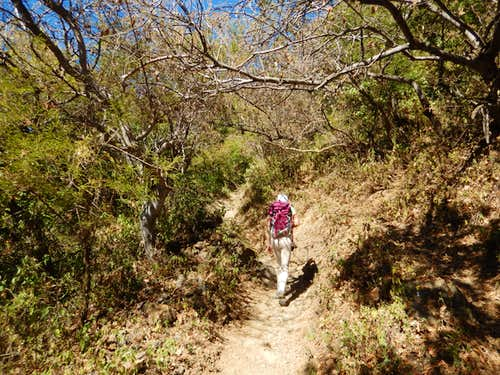 Hiking trails above Ajijic.