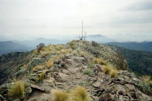 The summit of Mount Livermore...
