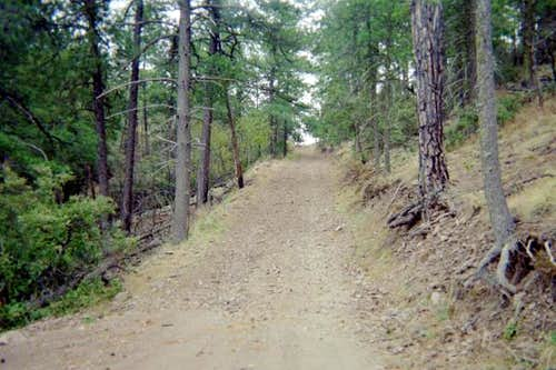 The road leading to Bridge Gap.