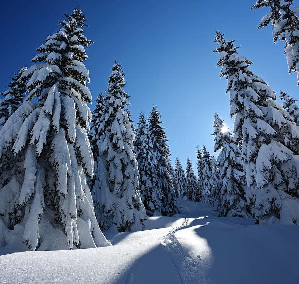 The joy of ski touring