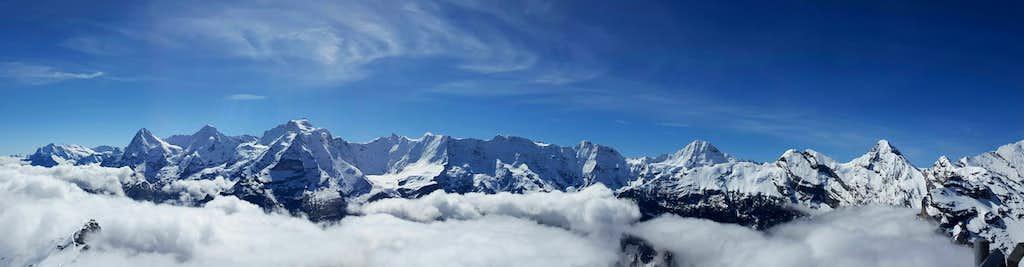 Birg in the Clouds