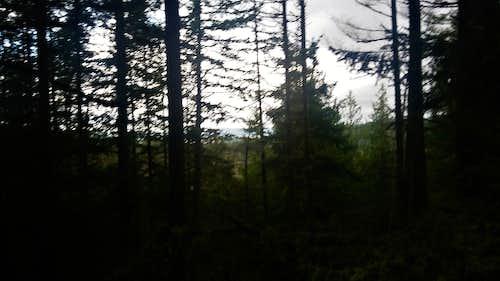 Pine Ridge Hill