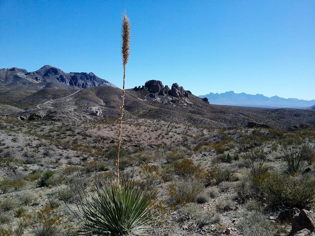 Organ Mountains and Desert Peaks National Monument