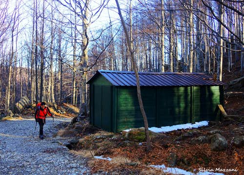 Pianaccia forest cabin