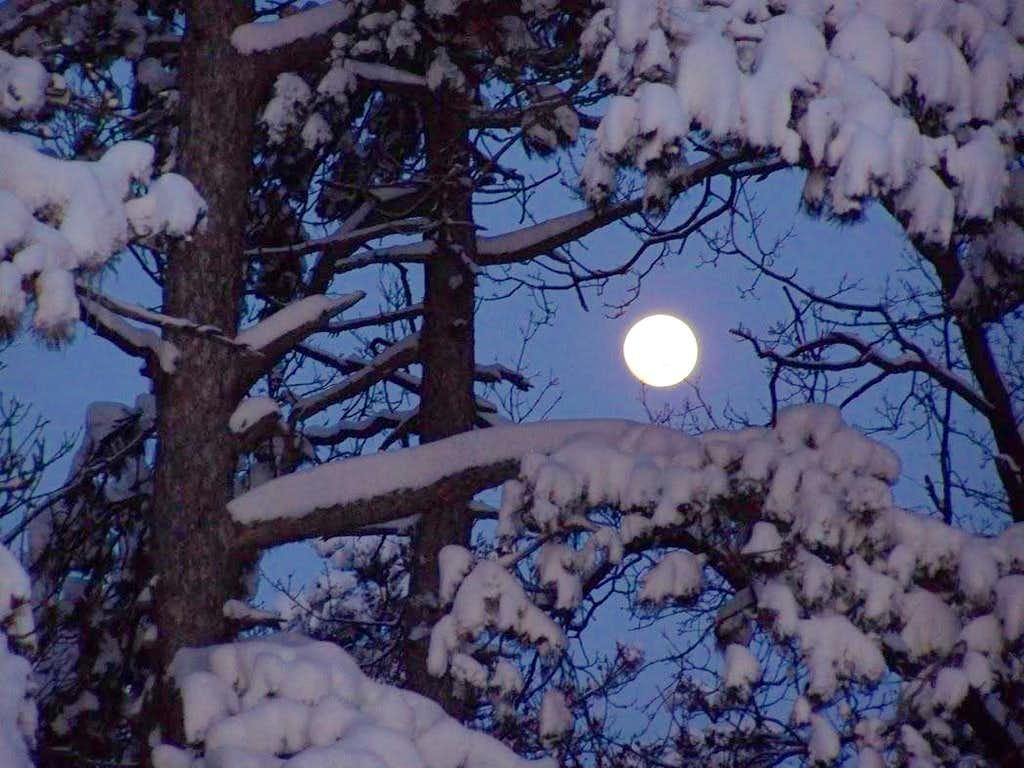 The last winter evening on Mecsek