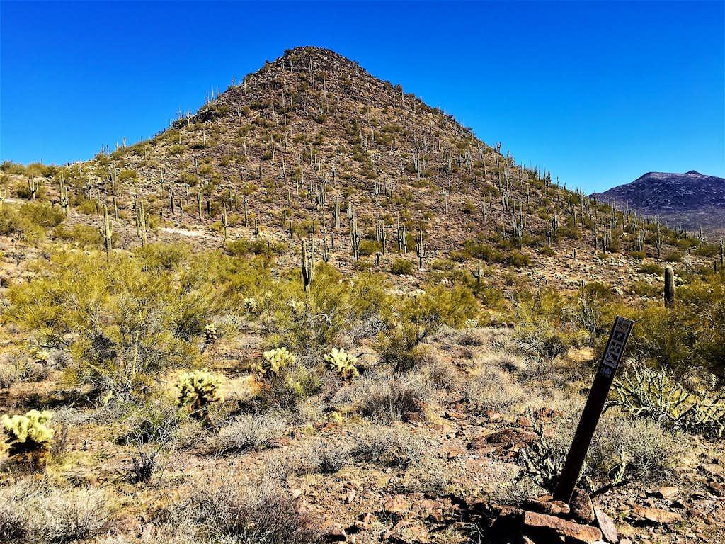 East Apache Peak 2,926'