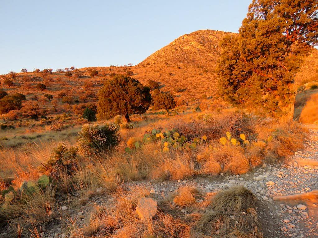 Near trailhead at sunrise