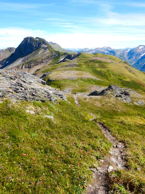 Trail along Juneau Ridge.