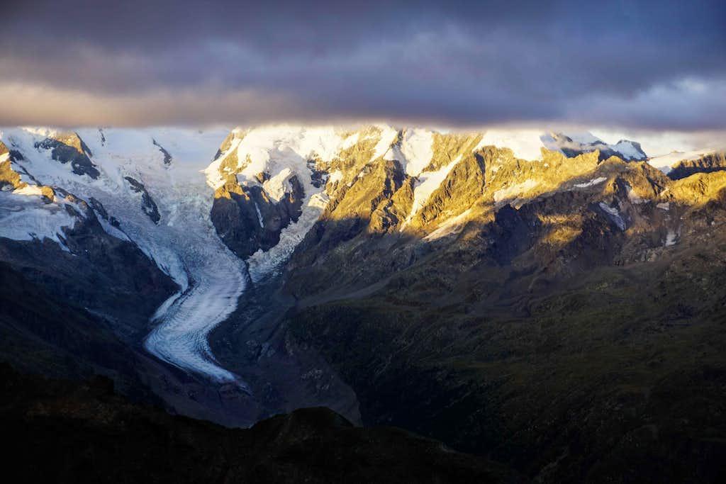 Bernina Group at sunrise from Piz Languard (3265m)