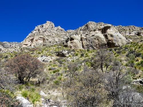 On Tejas Trail