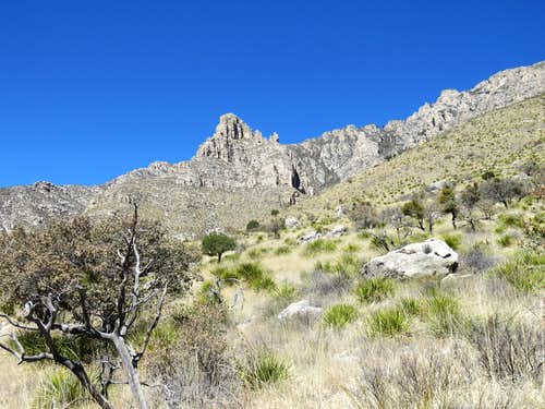 On lower Tejas Trail