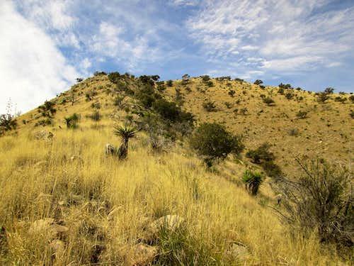 Mount Fagan AZ
