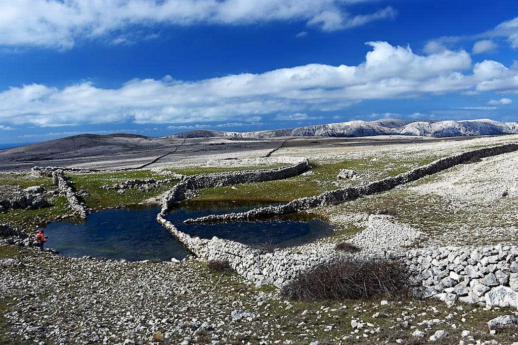 Diviska pond