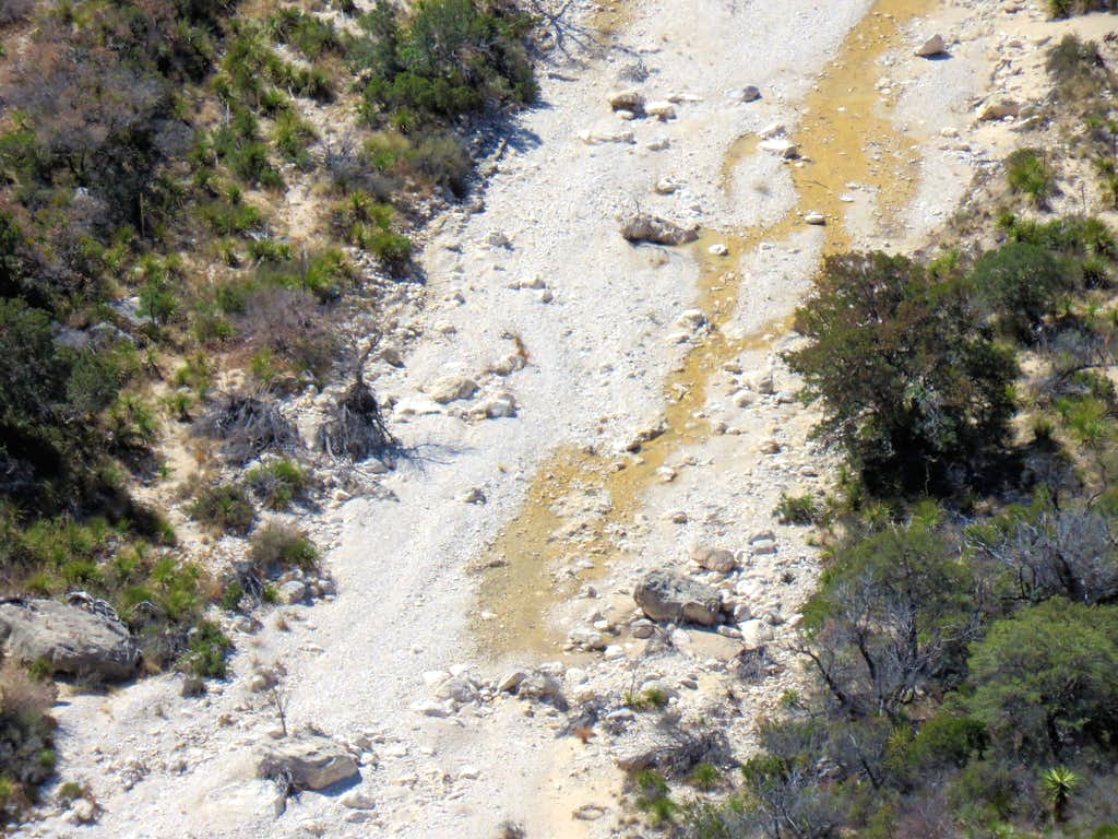 Zoomed view of water in McKittrick Canyon
