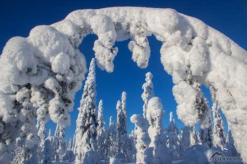 Tuntsa winter wonderland