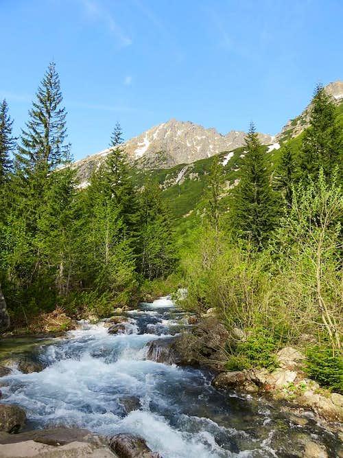 Kozi Wierch and Roztoka Stream