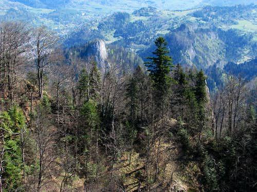 Sokolica from Trzy Korony