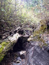 Derrumbada Azul trail