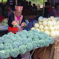 Hmong outdoor market on lower...