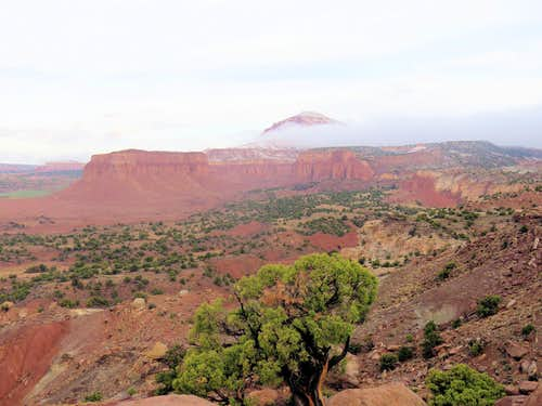From Cooks Mesa