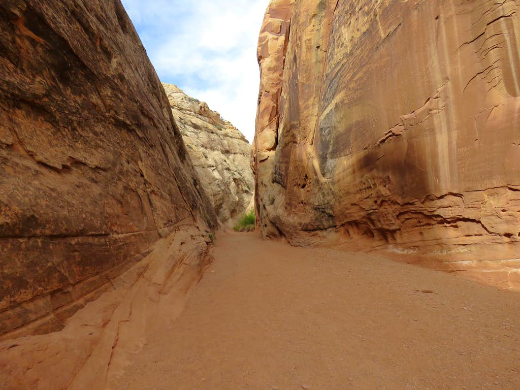 Capitol Gorge Narrows