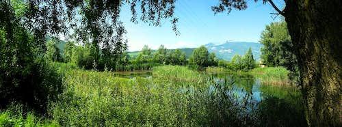Biotope of Taio (Trento)