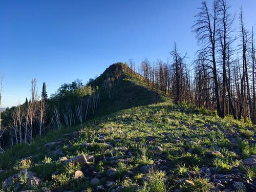 Indian Peak (Sevier Plateau)
