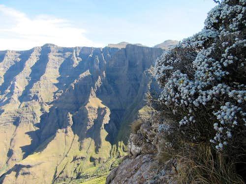 Rhino Peak: S-Route