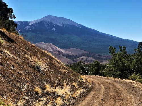 View of Humphreys Peak 12,633' from the descent