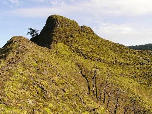 Summit of Munra Point.