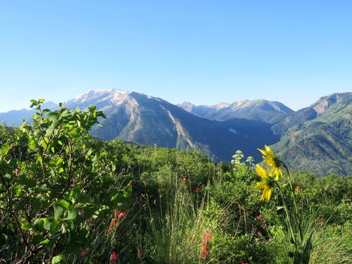 Treasure Mountain and 12ers above Yule Creek