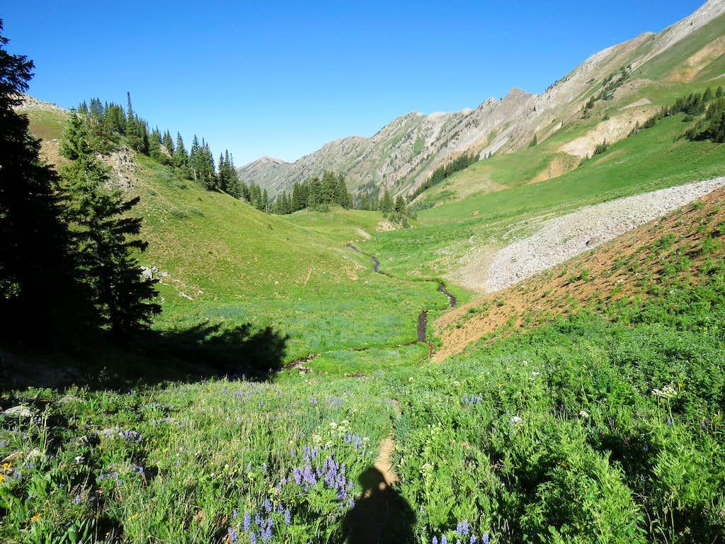 Elk Mountain, far left