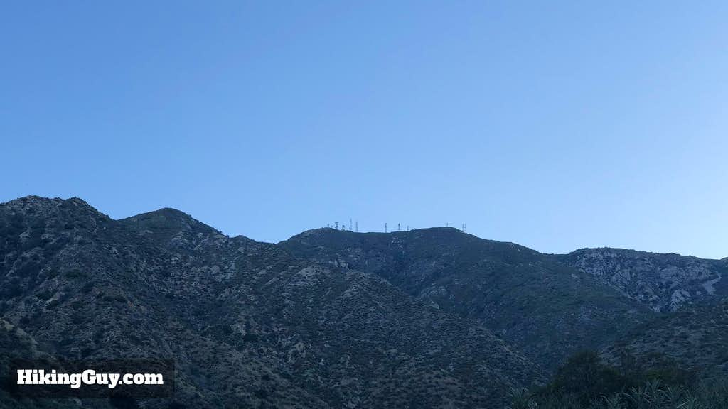 Mt Lukens Summit as seen from hike