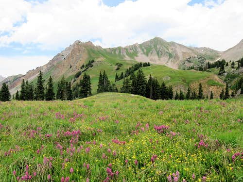 North Fork of Lost Trail