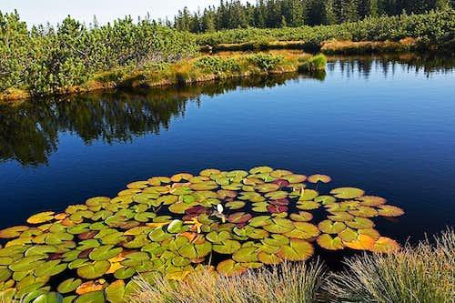 At Lovrenc Lakes