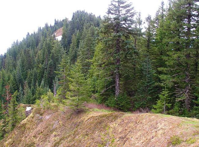 Observation Peak Trail