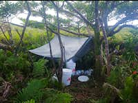 Camp 2.5 is just a rainwater catchment system