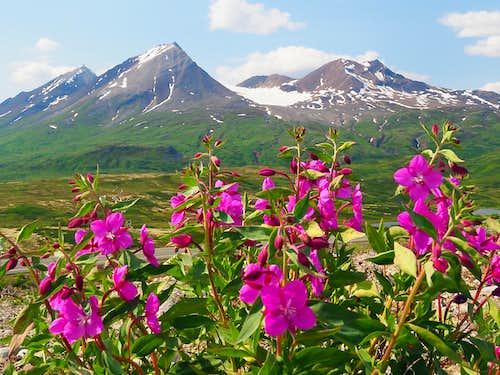Chilkat Pass Beauty