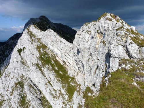 On the south ridge of the Piatra Craiului (Királykő)