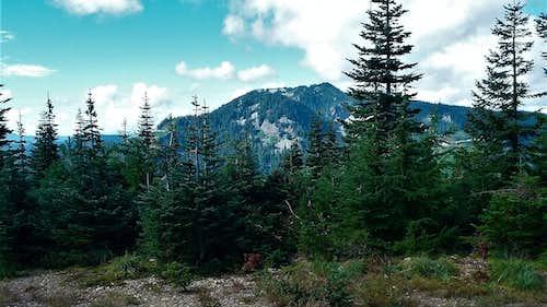 Meadow Mountain from Loser Ridge