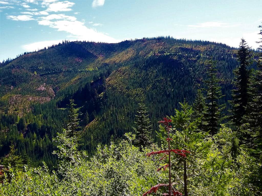 Loser Ridge summit area