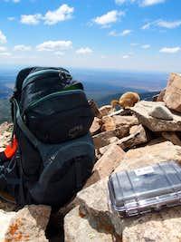 Retreating marmot on Mt. Peale