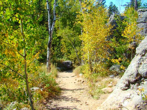 Early Autumn on Trail 4