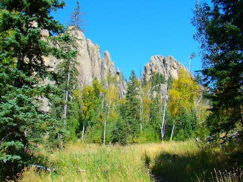 View Along Trail 4