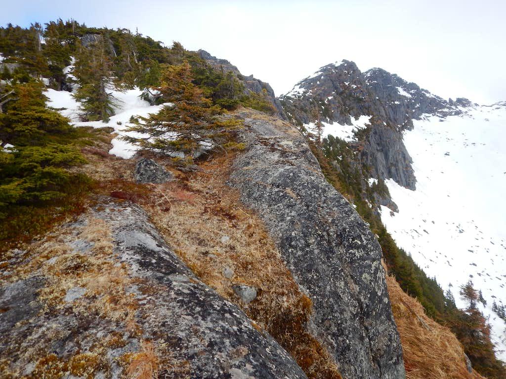 Looking up ridge scramble
