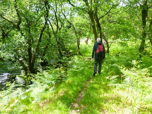 Strolling by the Afon Llugwy