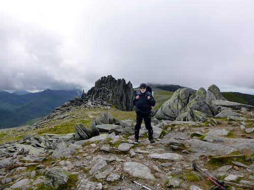 Johnnie on Glyder Fawr's summit