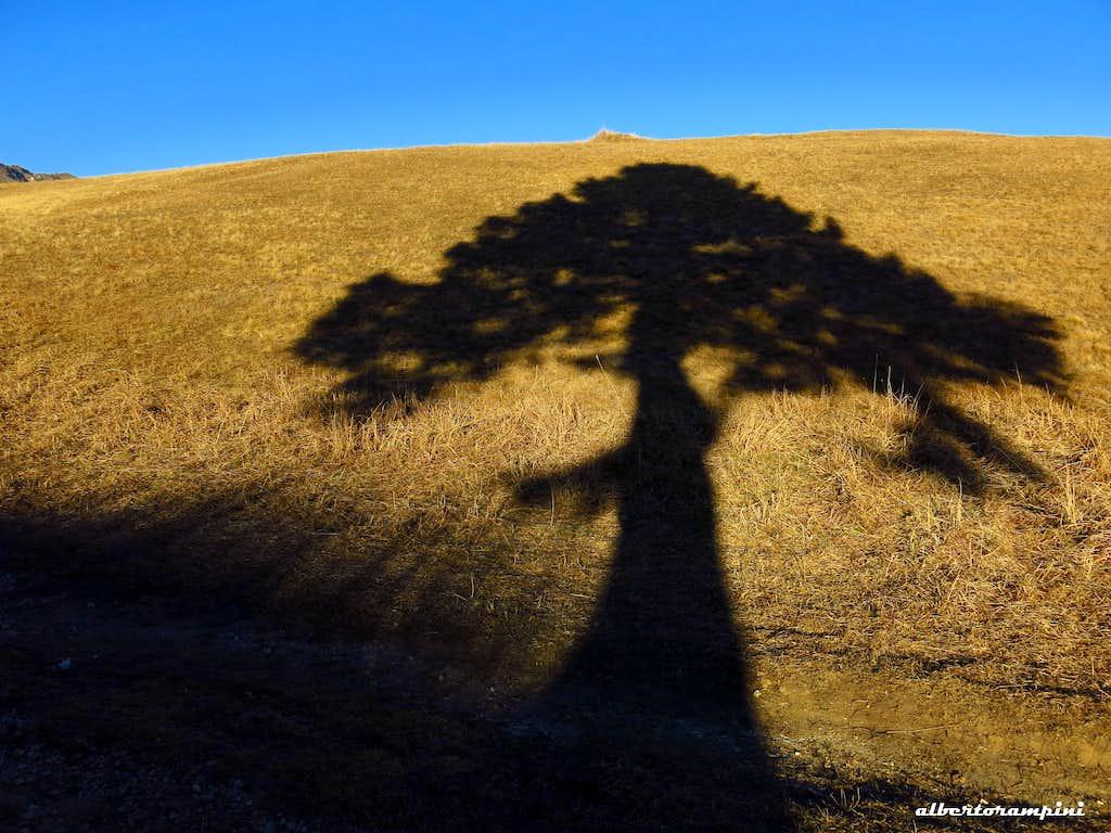 Long shadows at Passo Bordala