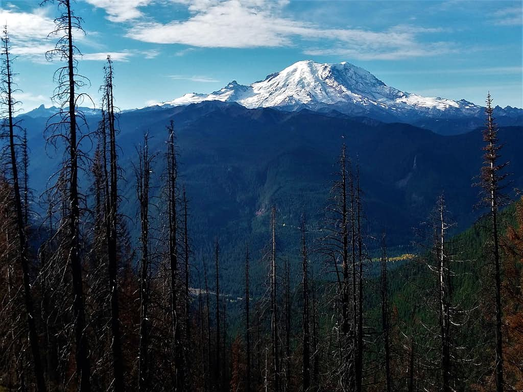 Mount Rainier from the summit area of Dalles Ridge