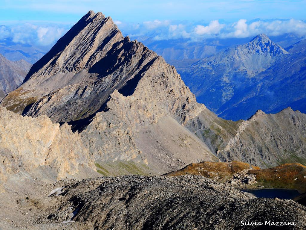 The sharp Taillante seen from Col d'Asti
